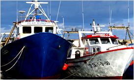 船艇行业专用涂料